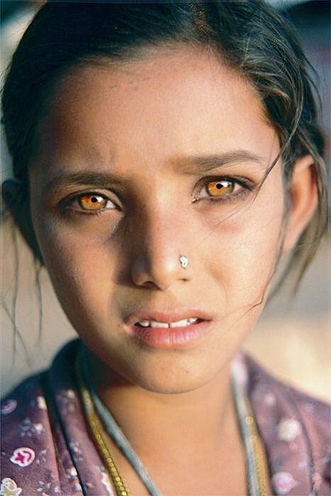 Goldeneyes Goldeyes Gold Golden Eyes Greeneyes Blueeyes