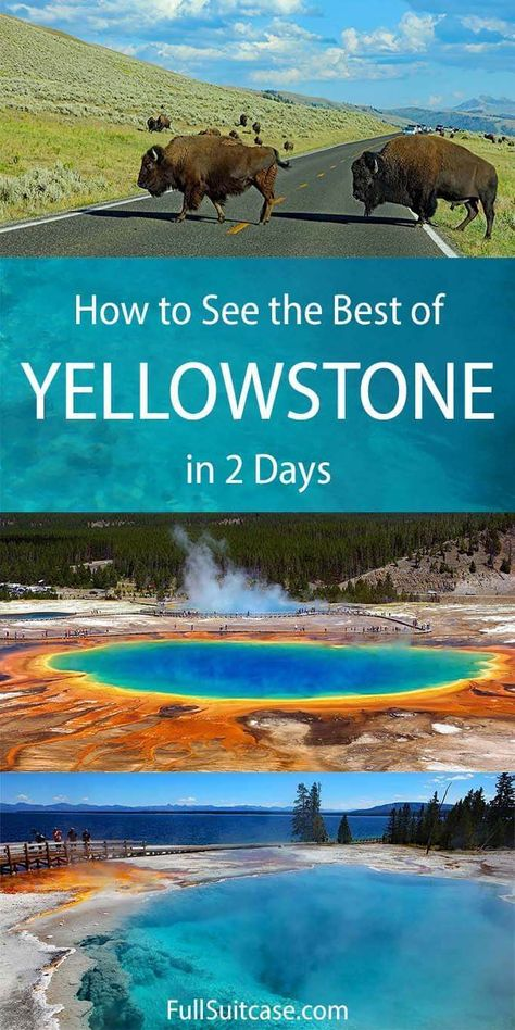 Two Days in Yellowstone: What to See & Itinerary Visit Yellowstone, Yellowstone Vacation, Yellowstone National Park, West Yellowstone Montana, Us National Parks, Grand Teton National Park, Montana National Parks, Places To Travel, Us Travel Destinations