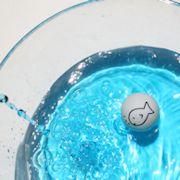 """Geburtstagsspiel """"Fisch ohne Wasser"""""""