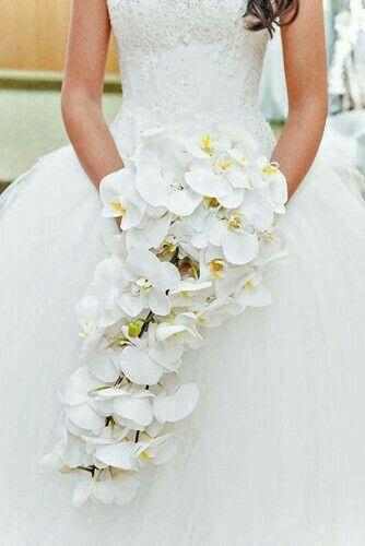 Bouquet total white - Organizzazione matrimonio - Forum Matrimonio