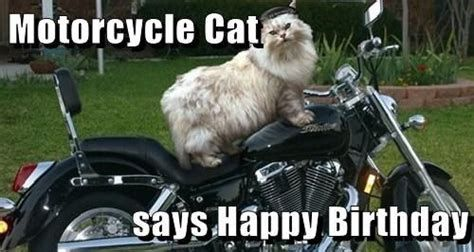 Pin On Harley Birthdays