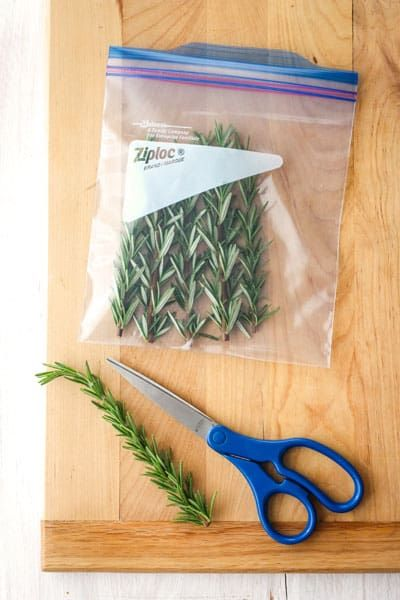 How To Store Fresh Herbs So They Last Longer Store Fresh Herbs Freezing Herbs Fresh Rosemary