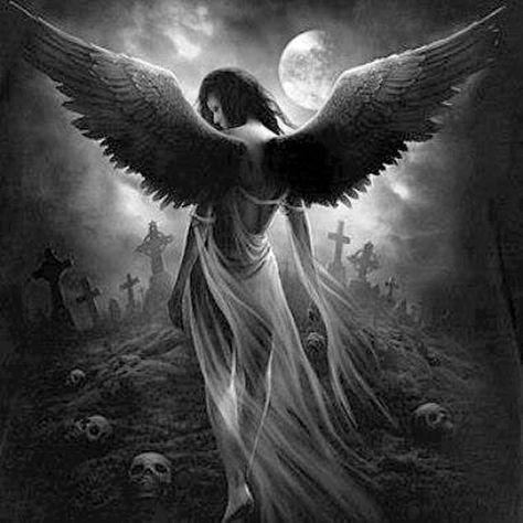 Enslaved Angel - Spiral Direct
