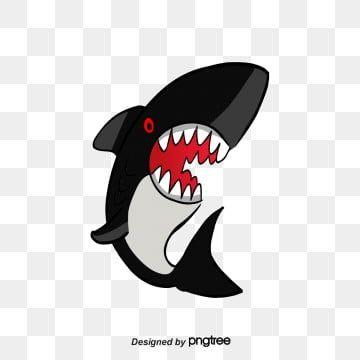 ปลาฉลาม ฉลามภาพต ดปะ ปลาฉลาม ปลาภาพ Png และ Psd สำหร บดาวน โหลดฟร ปลา ภาพประกอบ ตกปลา
