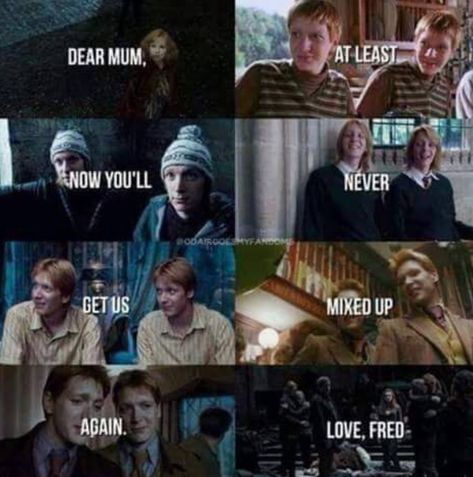 45 Harry Potter photos that you will cry  - 16