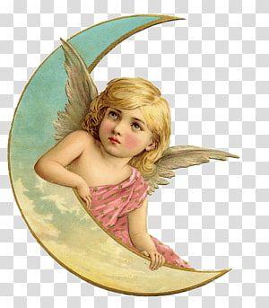 Vintage Christmas Guardian Angel Cherub Angel Transparent Background Png Clipart Angel Illustration Clip Art Vintage Angel Drawing