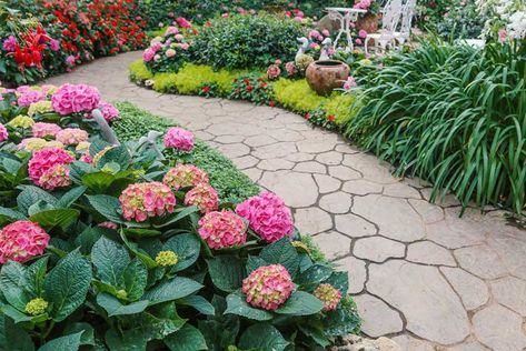 10 Plants for a Shaded Walkway