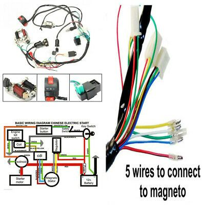 ATV Electric Start Quad Wiring Harness CDI Stator Ignition 50 70 90 110  125CC in 2020 | Motorcycle wiring, Atv quads, Motorcycle parts and  accessoriesPinterest