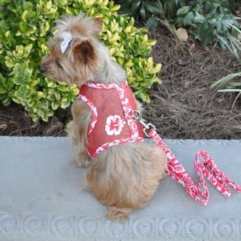 Cool Mesh Dog Harness Leash Print Red Dog Harness Dog Design