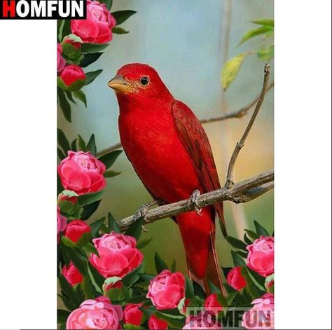 5D Diamond Painting Red Bird and Roses Kit  Offered by Bonanza Marketplace. www.BonanzaMarketplace.com #diamondpainting #5ddiamondpainting #paintwithdiamonds #disneydiamondpainting #dazzlingdiamondpainting #paintingwithdiamonds #Bird