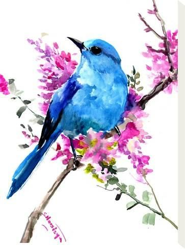 Stretched Canvas Print: Mountain Bluebird And Spring Flowers by Suren Nersisyan : 16x12in