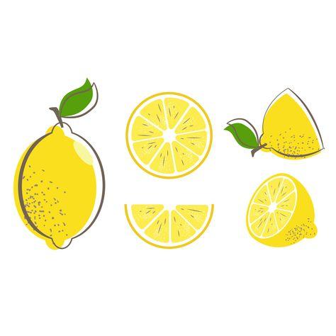 Fresh Lemon Fruits Leaf Lemon Vector Stock Vector (Royalty Free) 1141647665