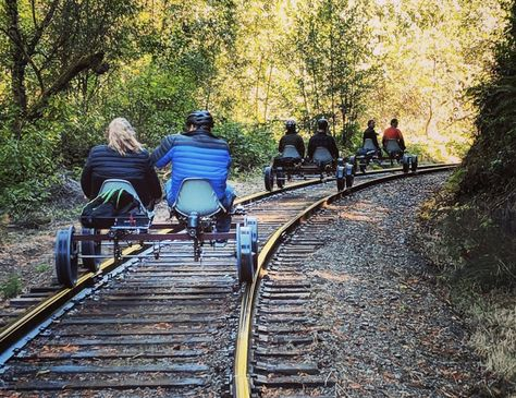 Pedal Through The Redwood Forest In Northern California For The Ultimate Outing