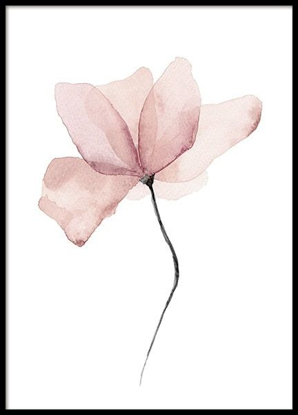 Aquarelle Flower Poster In 2020 Watercolor Flowers Watercolor