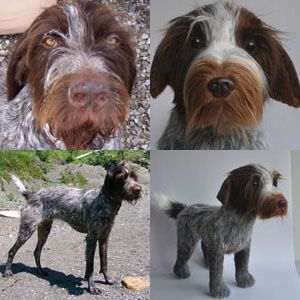 44167310bb56 100% custom stuffed animals made to look just like YOUR pet! They're called  Cuddle Clones : ) This is Rufus the German Wire-haired Pointer…