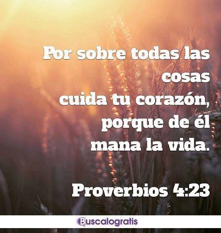 Frases De La Biblia Sobre La Vida Frases De La Biblia