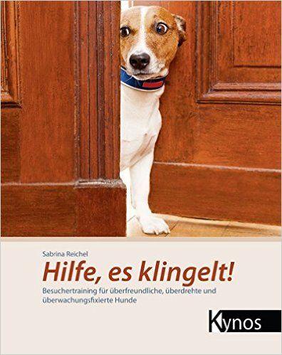 Full House Was Du Fur Deinen Hund Tun Kannst Vitacanis Hundchen Training Hundetraining Hunde