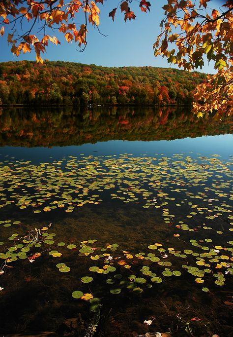 Lake Mohawk, Kittatinny Valley State Park, New Jersey, about a 45 minute ride north and west on Route80