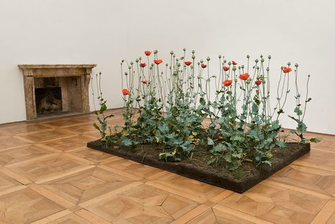Roxy Paine, Crop (Poppy Field), 1997-1998, Natura naturans. Roxy Paine and Meg Webster (Works from 1982 to 2015) at Villa Panza