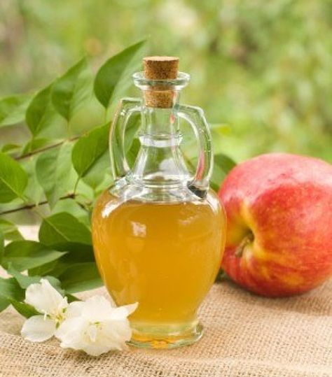 Boost Your Health with Apple Cider Vinegar and Honey by Jennifer Heinzel, Mother Earth Living