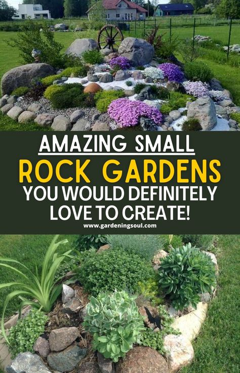 Amazing Small Rock Gardens You Would Definitely Love To Create!