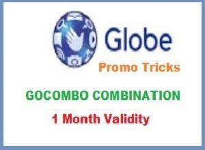 Globe Internet Promo 1 Month Validity - globe , globe