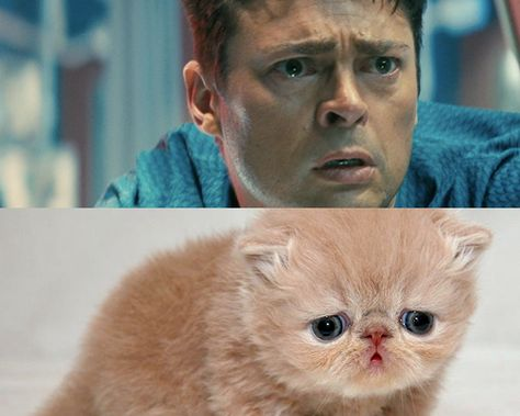 How Karl Urban in Star Trek looks like a sad kitty.   30 Images You'll Never Ever Be Able To Erase From Your Memory