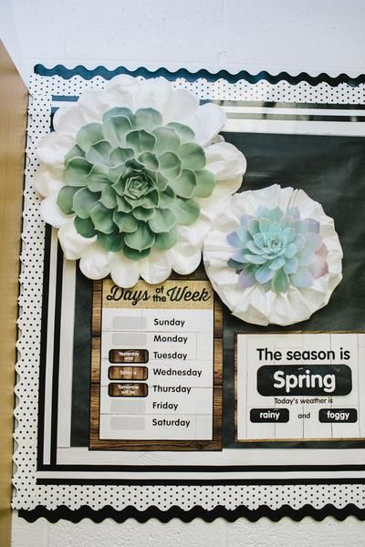 Succulent Cutouts by Schoolgirl Style Classroom Decor Themes, Classroom Setting, Classroom Setup, Classroom Design, Music Classroom, Future Classroom, School Classroom, Classroom Behavior, Kindergarten Classroom