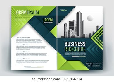 Vector Brochure Layout Flyers Design Template Company Profile