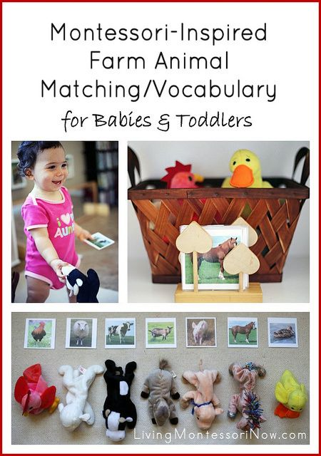 Montessori-Inspired Farm Animal Matching/Vocabulary for Babies and Toddlers