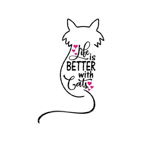 Attitude lives here kitty decal