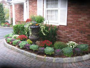 Make Your Fall Landscaping Pop With Seasonal Color Bergencounty Fall Plants Front Yard Landscaping Design Front Yard Landscaping