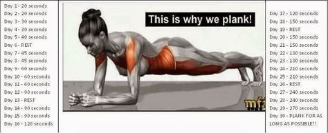 Join our 30 Day Plank Challenge #exercise #healthierlifestyle