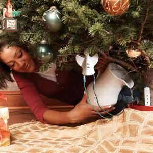 All About Christmas Tree Safety