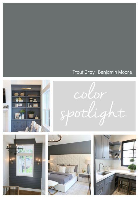 Benjamin Moore Trout Gray Color Spotlight. #paintcolor #gray #benjaminmoore