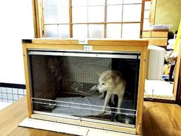 夜は 玄関の中に入れて使われています 犬小屋 天井収納 防音