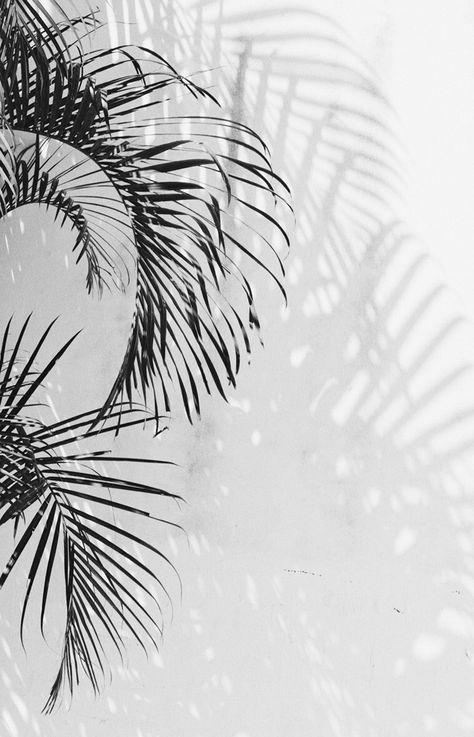 aesthetic wallpaper putih