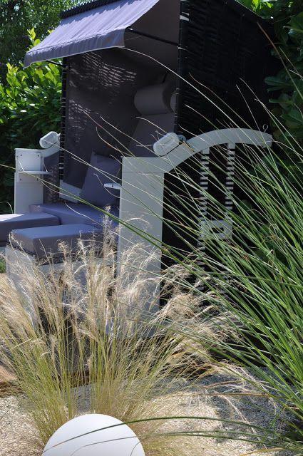 Rock It Mama Eine Schone Losung Fur Den Strandkorb Im Garten Den Eine Fur Garten Losung Mama In 2020 Air Purifying House Plants House Plants Decor Modern Garden