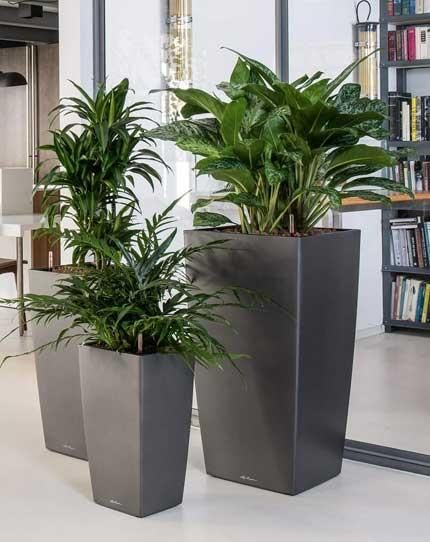 Tall Planters Plant Pot Decoration Planters Tall Planters