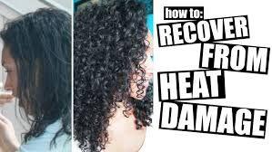 f562dd00a311ba1b3b4592c22be7132f - How To Get My Curly Hair Back After Heat Damage