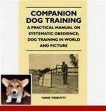 Dog Training For Dummies 2018 Dog Training Ukiah Cesar Millan