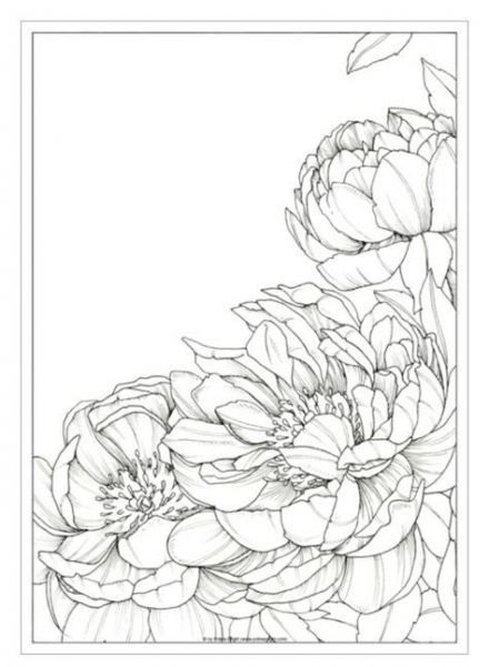 35 Ideas For Flowers Drawing Doodles Inspiration Coloring Pages Flower Drawing Flower Line Drawings Flower Art