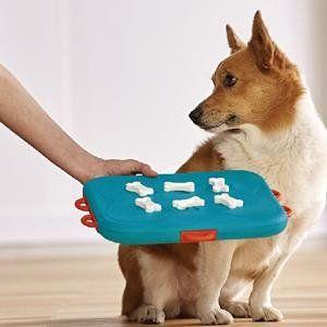 Pet Supplies Dog Casino Treat Dispensing Dog Toy Brain And