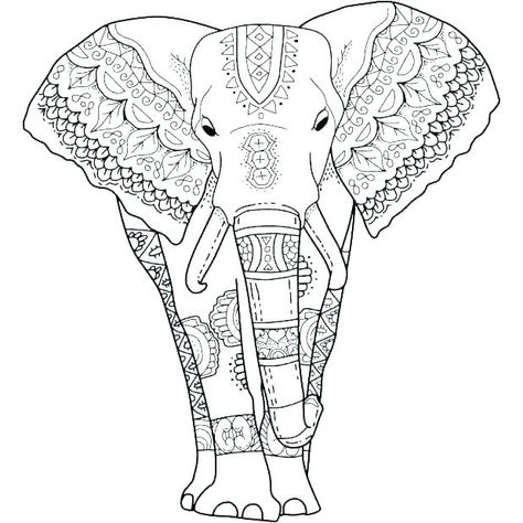 Elephant Color Pages Print Elephants Coloring Pages Elephant
