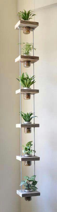 Hanging, vertical garden...
