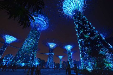 wonderful bay east garden gardens by the bay singapore entry to bay east garden is via