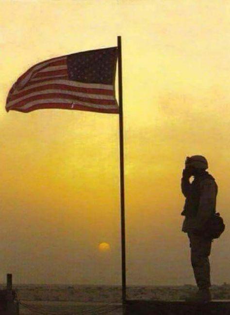 600 Heroes Ideas Military Heroes American Heroes God Bless America