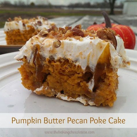 Pumpkin Butter Pecan Poke Cake! It's Insane! - Pumpkin & butter pecan cake drenched in a sweetened condensed milk, caramel sauce and pumpkin pudding, topped off with fluffy clouds of whipped cream, buttery toffee bits and pecans. It's INSANE!!! #pumpkin #pokecake #pumpkinpokecake #butterpecan #pumpkinpudding #thanksgiving #christmas