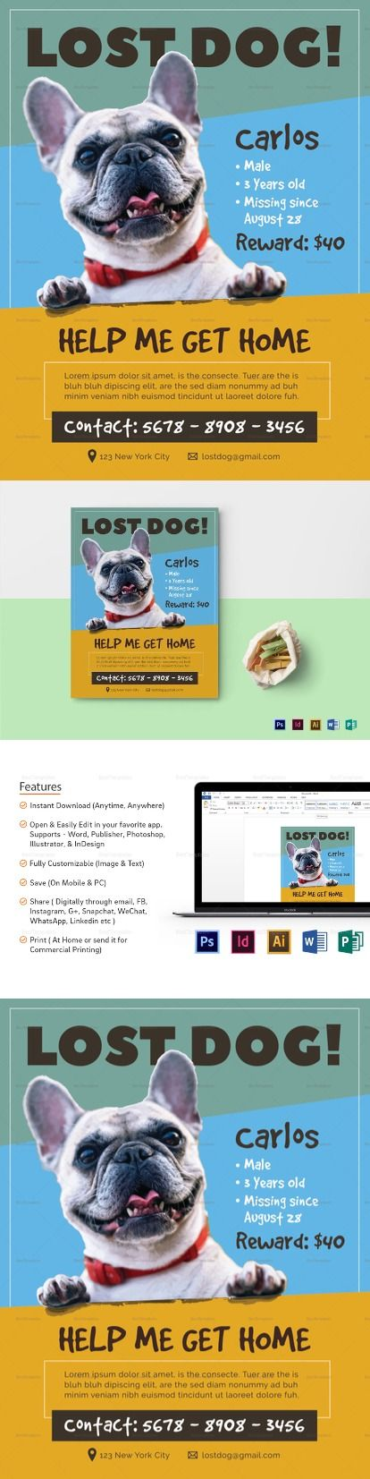 Lost Dog Flyer Template  Flyer Templates  High Quality