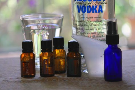 """Recipe """"Bed Bug be Gone"""" Spritz  1  C. water 10  drops lavender  10  drops rosemary 10  drops eucalyptus  3  drops clove  1  teaspoon vodka (acts as an emulsifier)  Fill several bottles, use some as refills or distribute to fellow travel buddies. Pull back the comforter and sheets and spray between all layer.  Essential oils are not oily so don't worry about staining the linens."""